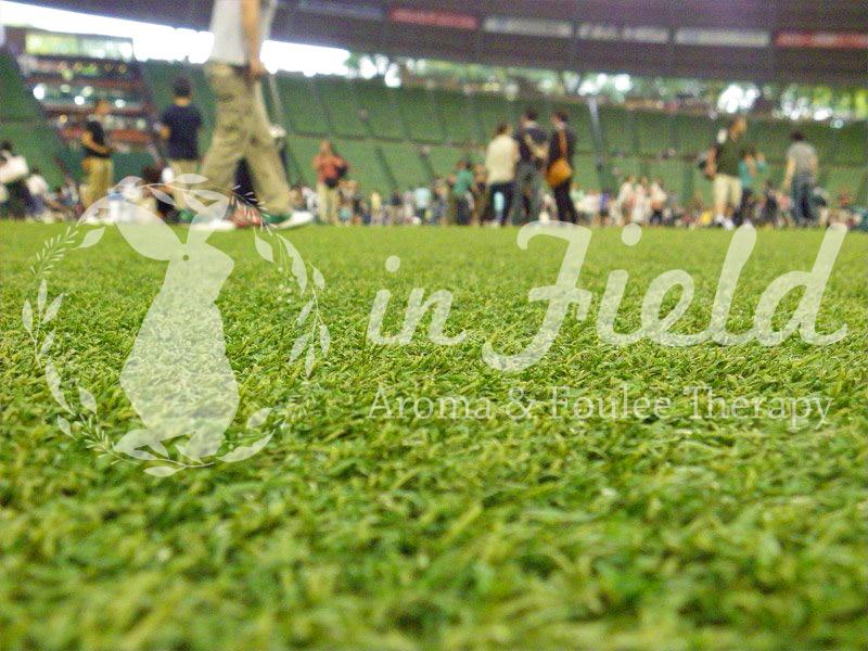西武球場の芝