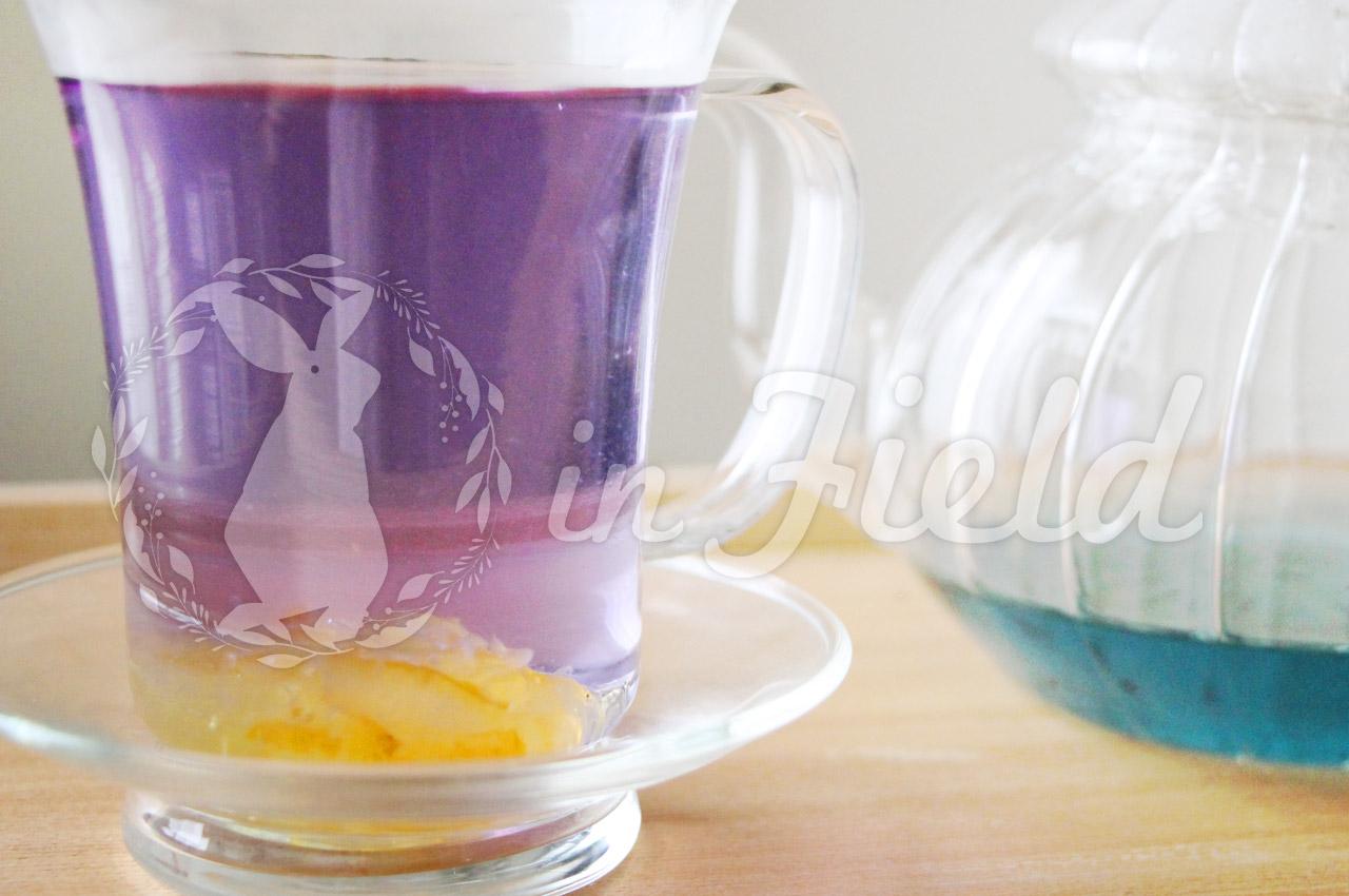バタフライピーゆず茶